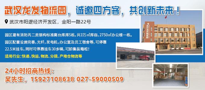 武汉龙发仓储有限公司