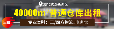 SW017472湖北-武汉-新洲区
