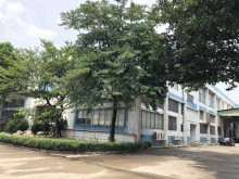 广东/广州/南沙区仓库出租