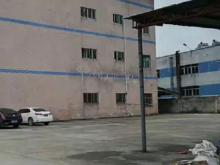 广东/东莞/凤岗镇仓库其它