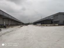 浙江/嘉兴/平湖市仓库出租