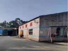 广东/东莞/横沥镇仓库出租